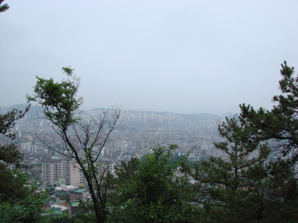 Is Seoul a Good City for an Expat to Live? (6/6)