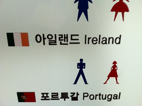 Ireland proudly represented in Mr. Toilet House.