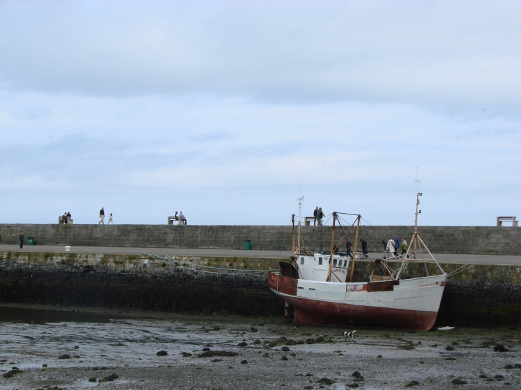Howth Harbour, July 2009.
